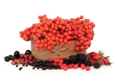 Elderberry, rose hip, hawthorn, blackberry, blackthorn, and rowan mountain ash berry fruit in a wooden bowl on white background  Very high in vitamin c and antioxidants  photo