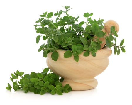 marjoram: Marjoram herb leaf sprigs in a marble mortar with pestle over white background  Stock Photo