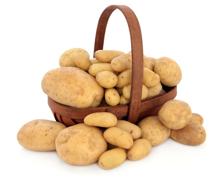 Charlotte new potatoes, maris piper normal and baking potato selection in a rustic basket over white background Stock Photo - 15124521