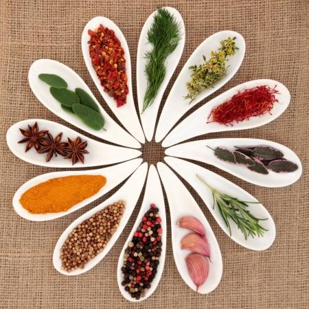 thyme: Specerijen en tuinkruiden selectie van knoflook, salie, tijm, venkel, rozemarijn blad takjes, saffraan, kurkuma, chili vlokken, peperkorrels, steranijs en korianderzaad in wit porselein gerechten op jute achtergrond