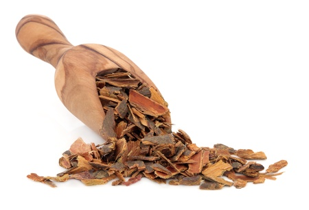 buckthorn: Buckthorn bark in an olive wood scoop over white background  Used in alternative medicine  Stock Photo