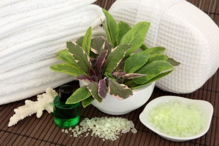 Sage herb leaf varieties in a porcelain mortar with pestle, white towels, towel sponge, coral shell, aromatherapy spa essential oil bottle and bath salts over bamboo background  photo