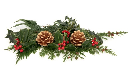 Christmas decoration of natural holly with red berry clusters and cedar leaf sprigs with gold pine cones over white background