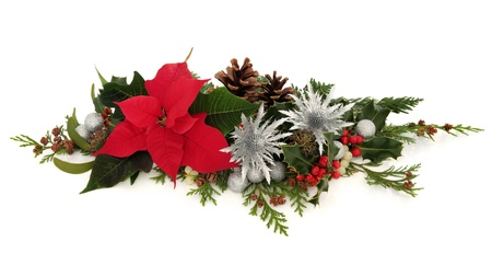 Winter and christmas decorative floral arrangement of poinsettia and silver thistle flowers