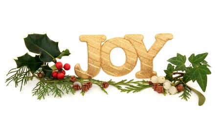 glädje: Julglädje gyllene glitter dekoration skylt med järnek, mistel, murgröna och cederträ cypress blad kvistar med kottar över vit bakgrund