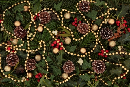 Winter flora and fauna of holly, mistletoe and ivy leaf springs with blue spruce, pine cones and gold bauble and bead strand arrangement forming a background Stock Photo - 15539510