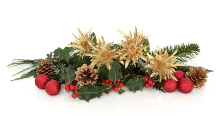 floral arrangements: Christmas decorative flora arrangement of golden thistle, red bauble clusters, holly, ivy, spruce and cedar leaf sprigs with pine cones over white background