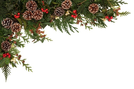 with mistletoe: Christmas border of holly, ivy, mistletoe and cedar cypress leaf sprigs with pine cones over white background