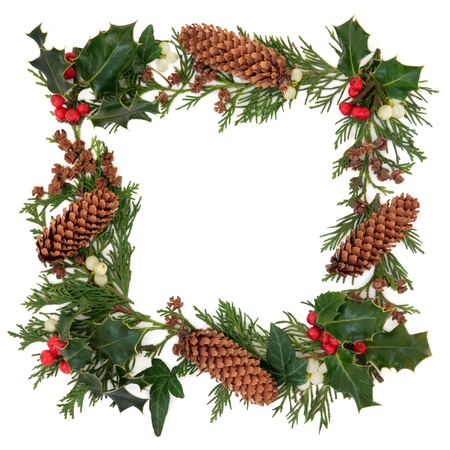 Winter and christmas decorative border of holly, ivy, mistletoe, cedar leaf sprigs and pine cones over white background