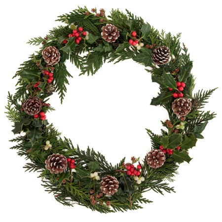 Christmas decorative wreath of holly, ivy, mistletoe, cedar and leyland leaf sprigs with pine cones over white background
