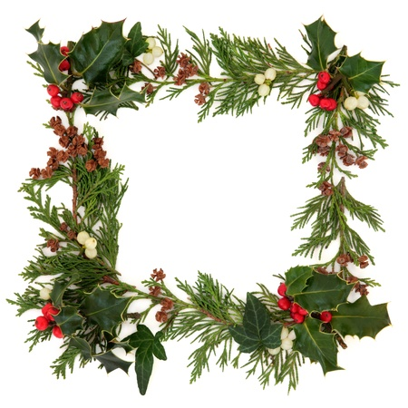 Christmas decorative border of holly,  ivy mistletoe and cedar leaf sprigs with pine cones over white background  Stock Photo