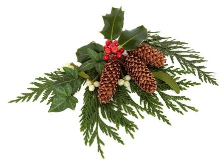 muerdago: Navidad decorativos disposici�n de acebo, el mu�rdago, la hiedra, el cedro, cipr�s ramitas de hojas y conos de pino sobre fondo blanco
