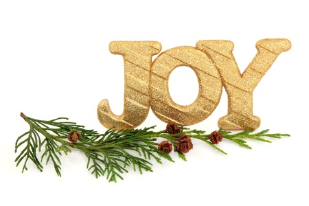 Sparkling gold glitter christmas joy sign with cedar cypress leaf sprigs and pine cone clusters over white background  Stock Photo - 15799746