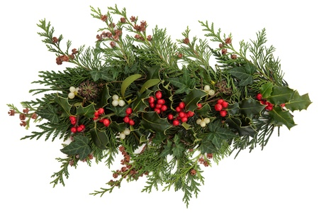Winter and christmas flora and fauna of holly, ivy, mistletoe and cedar leaf sprigs with pine cones over white background Stock Photo - 15799756