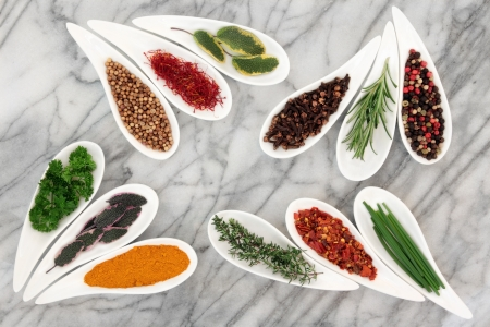 sampler:  Herb and spice selection in white porcelain dishes over marble background