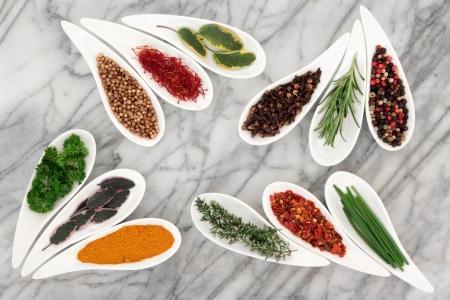 spezie: Herb selezione e spezie in piatti di porcellana bianca su sfondo di marmo