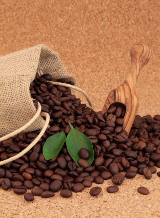 Coffee beans in a hessian drawstring sack and loose with leaf sprigs over cork background Stock Photo - 16100833