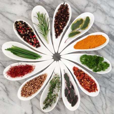 Herb and spice selection in white porcelain dishes over marble background Stock Photo - 16112975
