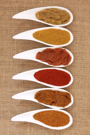 Curry powder and paste in white porcelain bowls over hessian sack background  Stock Photo - 16112978