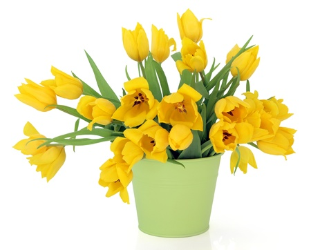 Yellow tulip flowers in a green metal vase over white background, perfect lover variety  Stock Photo - 16244191