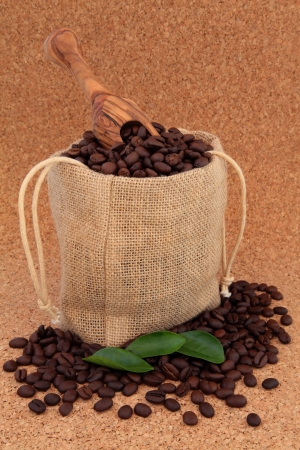 Coffee beans in a hessian drawstring sack and loose with leaf sprigs and olive wood scoop over cork background  Stock Photo - 16244213