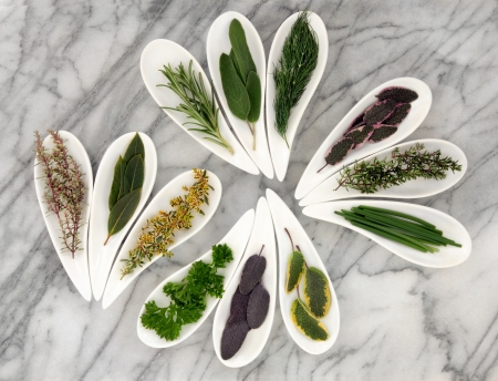 Herb selection of varieties of sage, thyme, fennel, chives, mint, rosemary, parsley and bay leaf sprigs in white porcelain dishes on a mottled marble background  Stock Photo - 16244206
