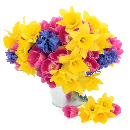 Tulip, daffodil and hyacinth spring flower arrangement in an aluminium pot over white background Stock Photo - 16383854
