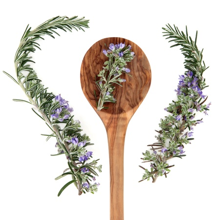 rosemary flower: Rosemary herb with flower sprigs in an olive wood spoon and loose over white background  Stock Photo