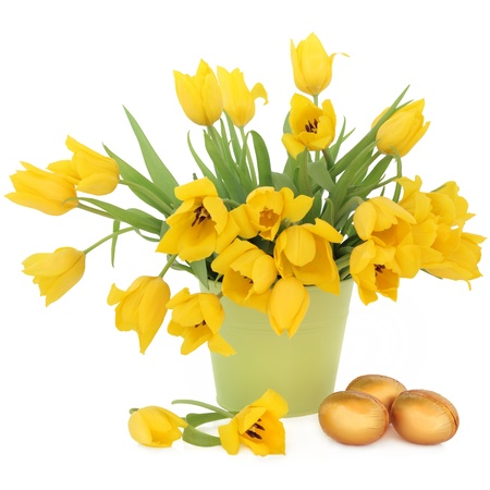 Yellow tulip flowers in a green bucket with golden easter eggs over white background  Stock Photo - 17119653