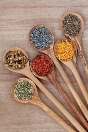 medicina natural: Hierba de selección para el uso alternativo uso medicinal en las cucharas de madera de olivo sobre fondo papiro Foto de archivo