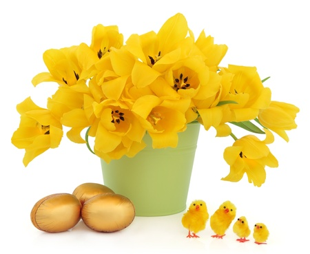 Yellow tulip flowers in a green bucket with golden easter eggs and decorative chicks over white background Stock Photo - 17248857