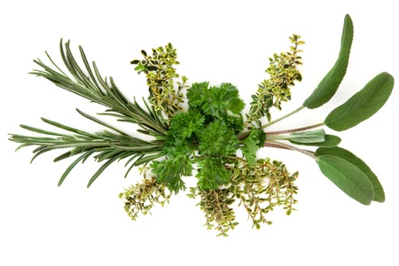 Parsley, sage, rosemary and thyme herb leaf abstract arrangement over white background  Stock Photo - 17248862