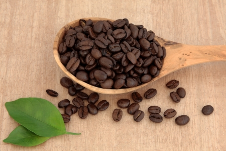 Coffee beans in an olive wood spoon with leaf spring over papyrus background Stock Photo - 17420735