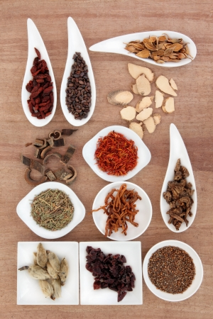 Chinese herbal medicine selection over papyrus background  Stock Photo - 17420762