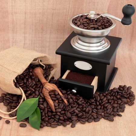 Coffee grinder, beans and leaf sprigs over papyrus background  Stock Photo - 17588056