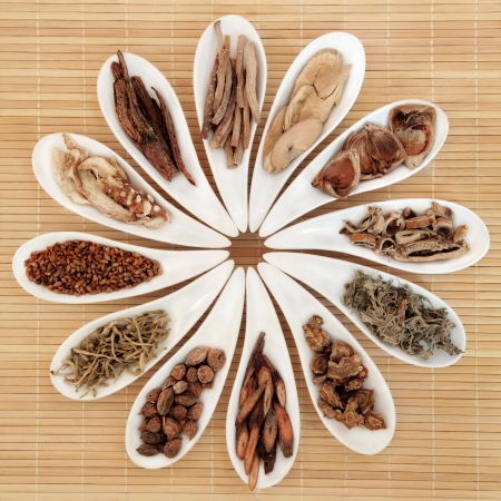 Chinese herbal medicine selection in white porcelain dishes over bamboo background