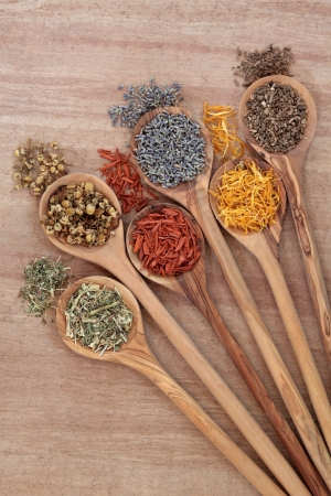 Medicinal herb selection in olive wood spoons over papyrus background Stock Photo - 17588072