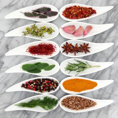 Herb and spice selection in white porcelain leaf shaped dishes over marble background Stock Photo - 17588051