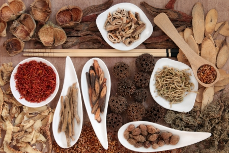 chinese herbal: Traditional chinese herbal medicine selection over papyrus background