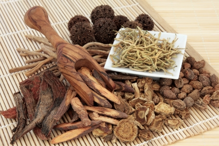 Chinese herbal medicine selection in a porcelain dish, scoop and loose over bamboo mat  Stock Photo