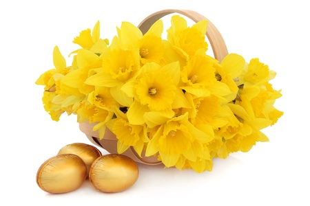 Easter egg group with basket of daffodil flowers over white background  Stock Photo - 17817726