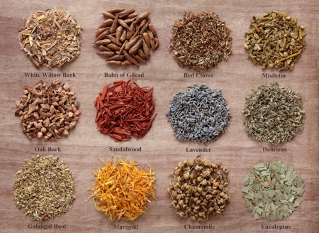 Medicinal herb selection also used in magical potions over papyrus background  Titles provided  Stock Photo - 18020697