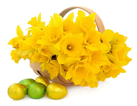 Daffodil flower arrangement in a wooden basket with green and gold chocolate easter eggs over white background  Stock Photo - 18020693