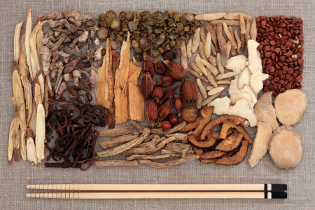 codonopsis roots: Chinese herbal medicine with chopsticks over beige linen background