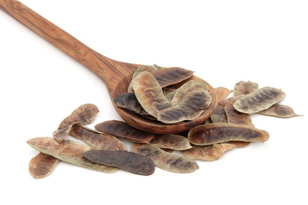 Senna fruit pods in an olive wood spoon over white background Stock Photo - 18032471