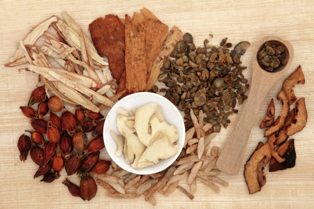 chinese herbs: Chinese herbal medicine selection over papyrus background  Stock Photo