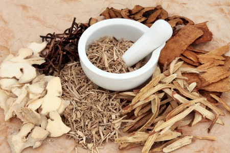 chinese medicine: Chinese herb selection with mortar and pestle over mottled background