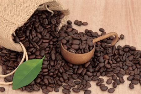 Coffee beans in a hessian sack with leaf sprig over papyrus  background Stock Photo - 18305444
