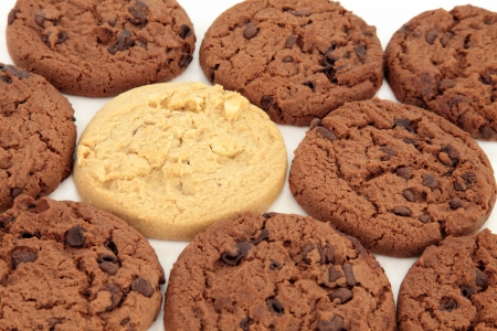 Chocolate chip cookies with one light chocolate cookie over white background  Selective focus  Stock Photo - 18305439