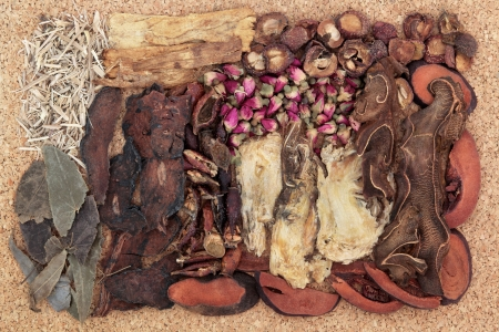 Chinese traditional herbal medicine selection over cork background  Stock Photo - 18422905